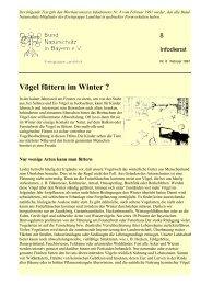 Vögel füttern im Winter - Kreisgruppe Landshut des Bund Naturschutz