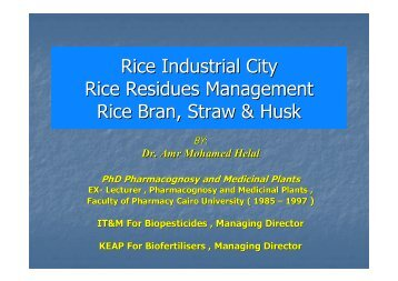 Rice Industrial City Rice Residues Management Rice Bran, Straw ...