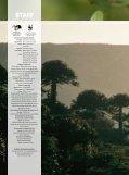 comercio ilegal - WWF - Page 4