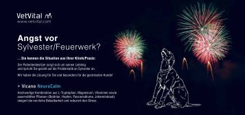 Angst vor Sylvester/Feuerwerk? - VetVital