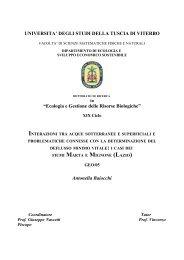 CAP 1-2.pdf - Unitus DSpace