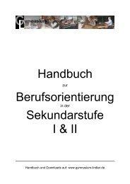 Handbuch Berufsorientierung Sekundarstufe I & II - Gymnasium ...