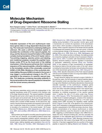 fa426b437 View - Alexander Mankin Lab - University of Illinois at Chicago