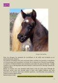 La revue trimestrielle du cheval barbe - Horizon Barbe - Page 2