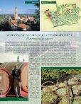 Sapori vicentini - Bacalà alla vicentina - Page 7