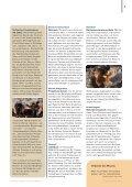 Schotten-Ehre - Rotary Schweiz - Seite 7