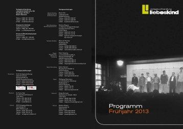 Programm 2013 - 2n2 media
