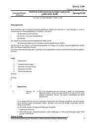Sprengstofflager-Richtlinien - Gewerbeaufsicht - Baden-Württemberg