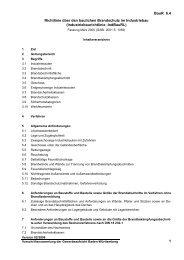 Richtlinie über den baulichen Brandschutz im - Gewerbeaufsicht ...