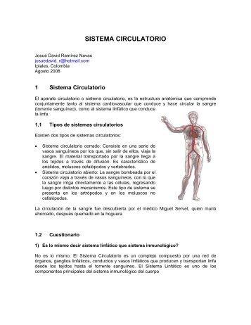 SISTEMA CIRCULATORIO - Monografias.com