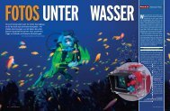 Fotos unter Wasser - dets foto seite