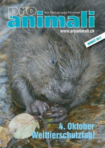 Herbst 2011 [pdf] - Pro Animali