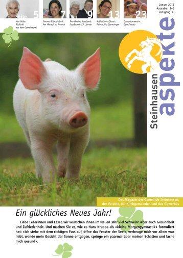 Ausgabe 01/2011 (Grösse 4.0 MB) - Aspekte Steinhausen