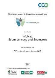 Infoblatt Stromrechnung und Strompreis - WIN