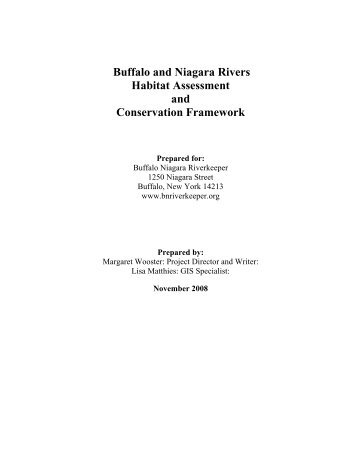 Buffalo and Niagara River Habitat Inventory and Assessment