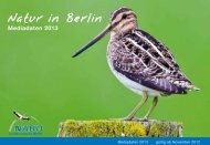 Natur in Berlin Mediadaten 2013 - Nabu