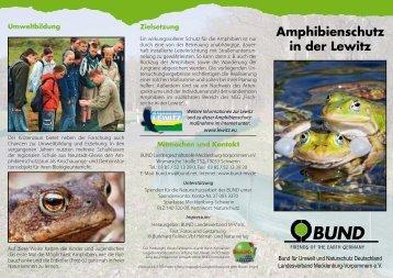 """Faltblatt """"Amphibienschutz in der Lewitz"""""""