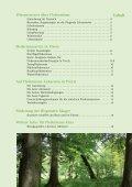 Fledermausbroschüre - BUND-Kreisgruppe Plön - Seite 3