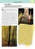 Der Wald - Umweltbüro - Seite 5