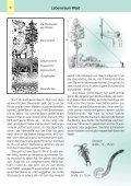 Der Wald - Umweltbüro - Seite 6