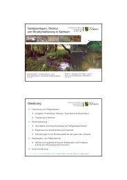 Gewässertypen, Struktur und Strukturkartierung in Sachsen ...