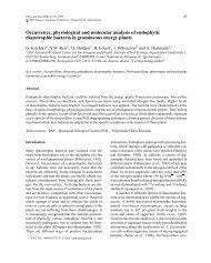 Occurrence, physiological and molecular analysis of endophytic ...