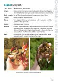 Crayfish and River Users - Environment Agency - Page 3