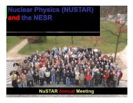 Status of the NESR - Department of Nuclear Physics