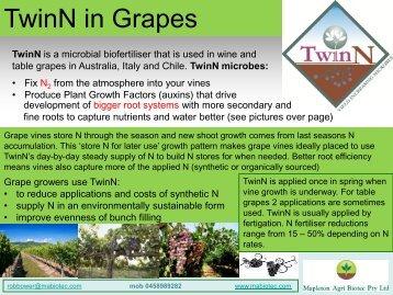 TwinN in Grapes