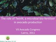 + TwinN - VII World Avocado Congress 2011