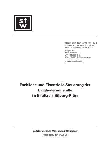 Gutachten Steuerung der Eingliederungshilfe im Eifelkreis Bitburg ...