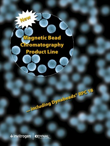 Magnetic Chromatography brochure - Invitrogen