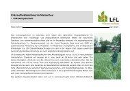 Vortrag Rhizoctonia - Bayerische Landesanstalt für Landwirtschaft