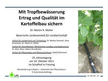 Mit Tropfbewässerung Ertrag und Qualität im Kartoffelbau sichern