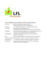 Welsches Weidelgras (Lolium multiflorum) - Bayerische ...