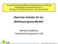Stand der Arbeiten zu einem Mehltauprognosemodell bei Hopfen