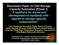 Discussion Paper on CO2 Storage Capacity Estimation - Carbon ...
