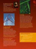 Courbes, les maths en pleine fo rme Le cerveau Filme r le travail ... - Page 5