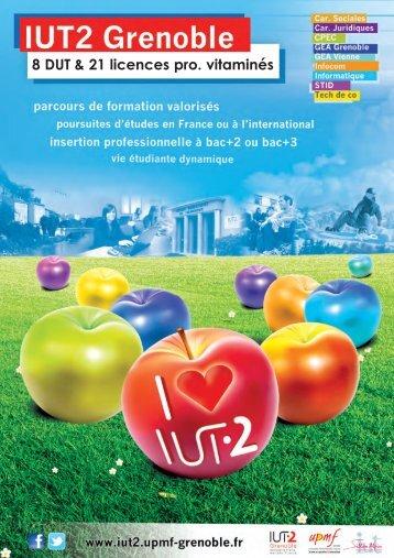 Plaquette de nos formations - IUT Grenoble 2 - Université Pierre ...