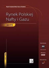 PDF (14 MB) - Instytut Nafty i Gazu