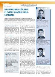 mechanismen für eine flexible controlling- software - Lineas