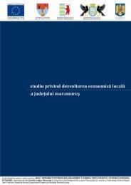 35-Studiu Maramures.pdf - Magic – instrumente de comunicare si ...