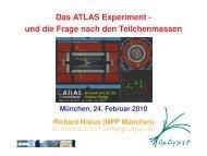 PDF File - Max-Planck-Institut für Physik - Max-Planck-Gesellschaft