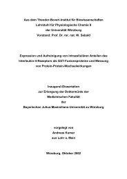 Dokument 1.pdf (1.237 KB) - OPUS - Universität Würzburg