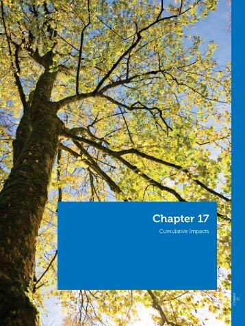 Chapter 17 - Southwark Council Planning Pages