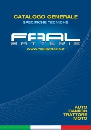 serie special 12 volt - Faal Batterie