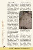 Seelilien aus der Obertrias von Guanling in Süd-China - Seite 2