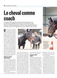 Migros Magazine - Le cheval comme coach - Equites