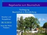 Regelwerke zum Baumschutz - Haus der Natur in Potsdam
