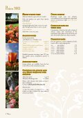 Enchanted and bewitching - Insel Mainau - Page 4